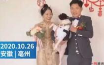婚礼现场狗狗踹开新娘索吻新郎,新娘:狗狗是我养大的